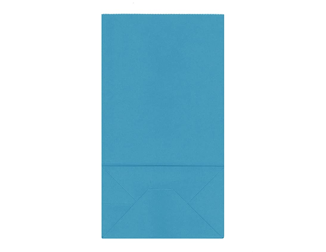 40CT Biodegradable, Food Safe Ink & Paper, Premium Quality Paper (Thicker), Paper Bag, Kraft Paper Sack, Goody Bags, Treat Sacks, Perfect for Party Filled with Small Favors (Medium, Turquoise)