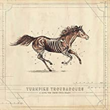 turnpike troubadours a long way from your heart songs
