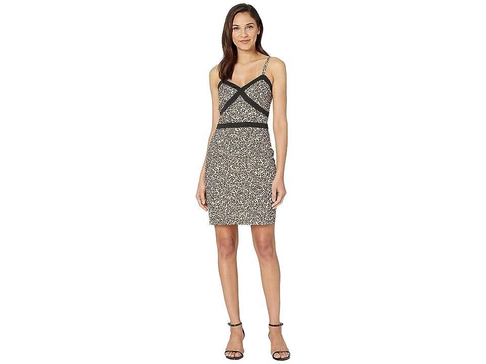 Bebe Tight Cami Dress (Leopard Safari) Women