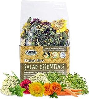 Pasture Plus+ Salad Essentials - Healthy Natural High-Fiber Dried Flower & Herb Treat - Squirrels, Guinea Pigs, Rabbits, C...