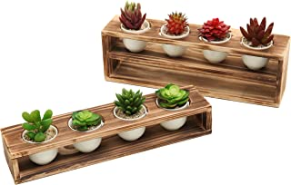 Best tiered wood planter Reviews