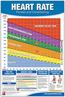 Fitness Heart Rate Chart/Poster: Fitness Heart Rate Poster, Training Zone Chart,