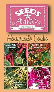 Bulk 3 Honeysuckle Seeds 480 Seeds +3 Plant Markers & Free Carnations & Cosmos - Major Wheeler, John Clayton