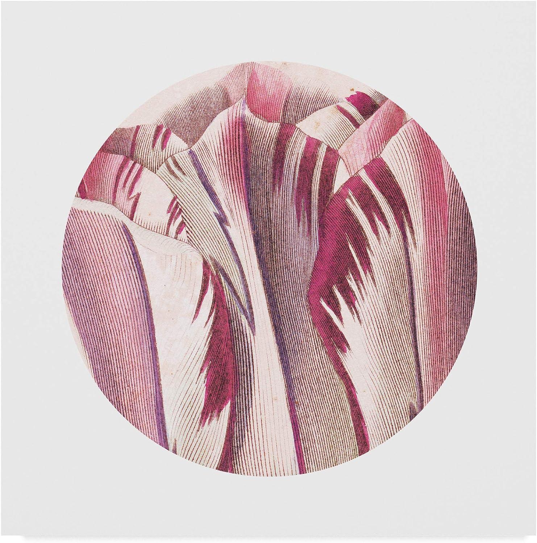 Trademark Fine Art Tulips Circle Art Wild Apple Portfolio, 14x14