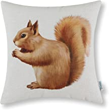 Best squirrel throw pillow Reviews