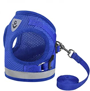 Mumoo Bear BLUE Dog Cat Safety Vest Harness Vest Reflective Walking Lead Leash for Puppy Dogs, Size M