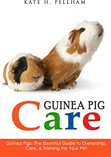 american guinea pig bouquet of guts and gore