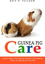 guinea pig book series
