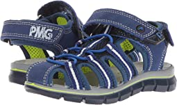 Primigi Kids PTV 13962 (Toddler/Little Kid)