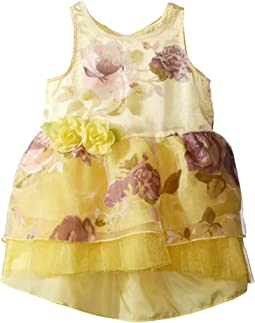 Printed Organza w/ Tulle Dress (Infant)