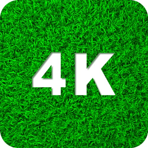 Green Wallpapers 4K & HD Backgrounds apps