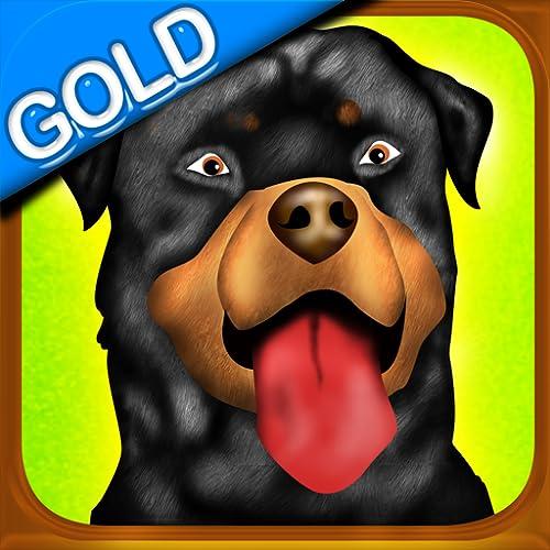 obstáculo de la agilidad del perro concurso de doma clásica carrera de oro