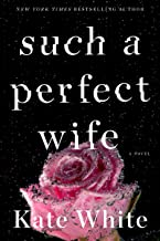 Such a Perfect Wife: A Novel