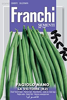 Italian Heirloom Bush Bean - La Victoire (K2)