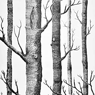 Wenmer Birch Tree Wallpaper 17.71
