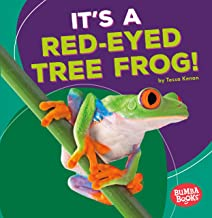 It's a Red-Eyed Tree Frog! (Bumba Books ® ― Rain Forest Animals)