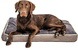 Best dog beds los angeles Reviews
