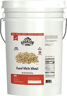 bulk hard white wheat