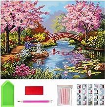 40X 30cm Premium 5D Diamond Painting Kit, Kids and Adults Paint with Diamonds Full Kit, DIY Diamond Art Painting for Wall ...