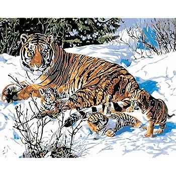 Medigy Peinture Par Numeros Kits Animaux Peintures Pour Adultes Enfants Aines Junior Peinture A L Huile De Bricolage Sur Toile Avec Cadre En Bois Tiger Amazon Fr Jeux Et Jouets