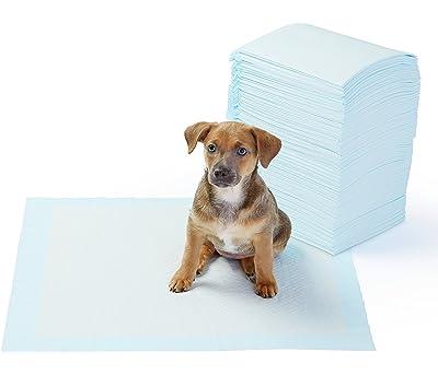 AmazonBasics Pet Training and Puppy Pads, Regular and Heavy Duty