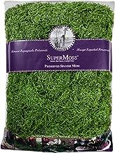 Super Moss Spanish Moss Preserved Bag Green 32oz