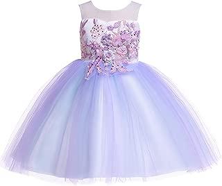 Weileenice 6M-12Y Kids Costume Cosplay Dress Girl Rainbow Tulle Dress 3D Embroidery Beading Baby Girls Princess Dress