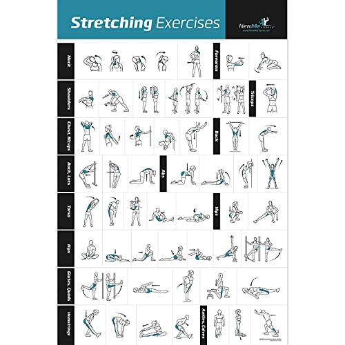 NewMe Fitness Stretching Exercise Poster Laminated - Shows How To Stretch Specific Muscles For Your Workout - Home Gym Fitness Guide (500mm x 700mm)