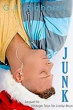 Junk: A Gay Transgender Holiday Romance Novelette (Vintage Toys for Lucky Boys Book 2)