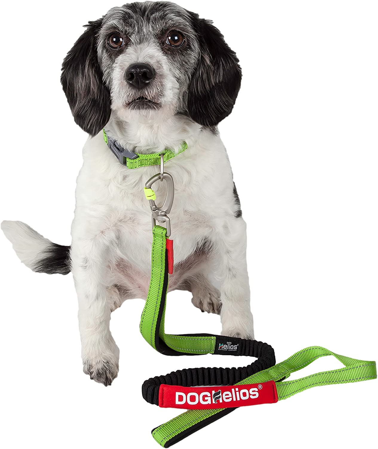 DOGHELIOS 'NeoIndestructible' Embroidered Thick Durable Pet Dog Leash and Collar, Medium, Green