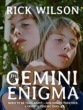 The Gemini Enigma