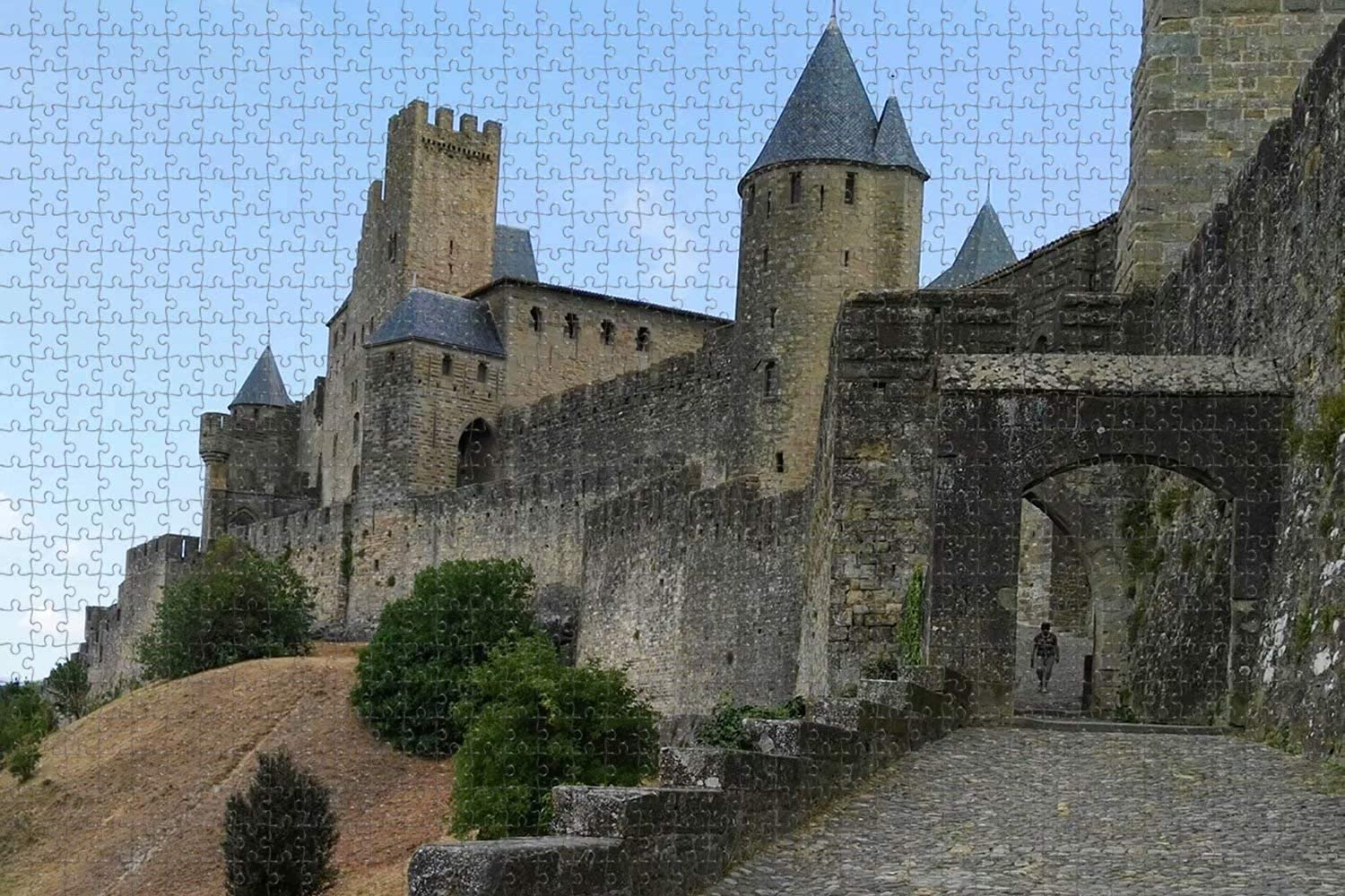 Ranking TOP9 France Carcassonne Castle AUDE 1000 Puzzle Jigsaw Art Piece Game Cheap mail order specialty store