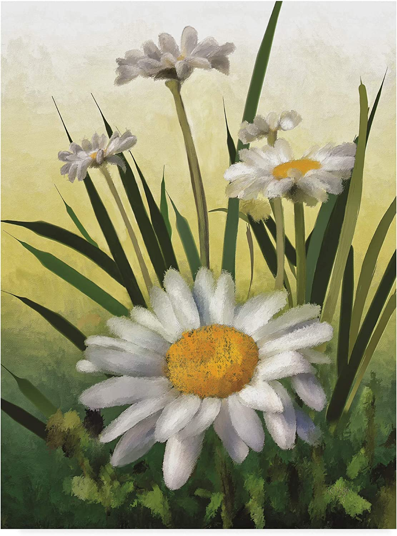 Trademark Fine Art Spring Daisies by Lois Bryan, 14x19