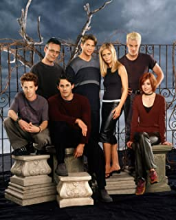 Buffy the Vampire Slayer TV Show Fabric Wall Scroll Poster (16