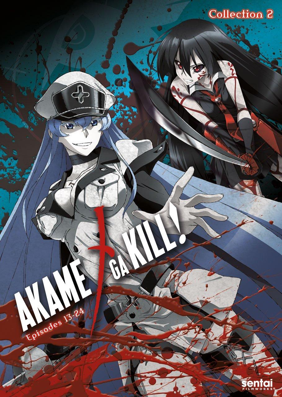 Akame Ga 2 Kill favorite SALENEW very popular!