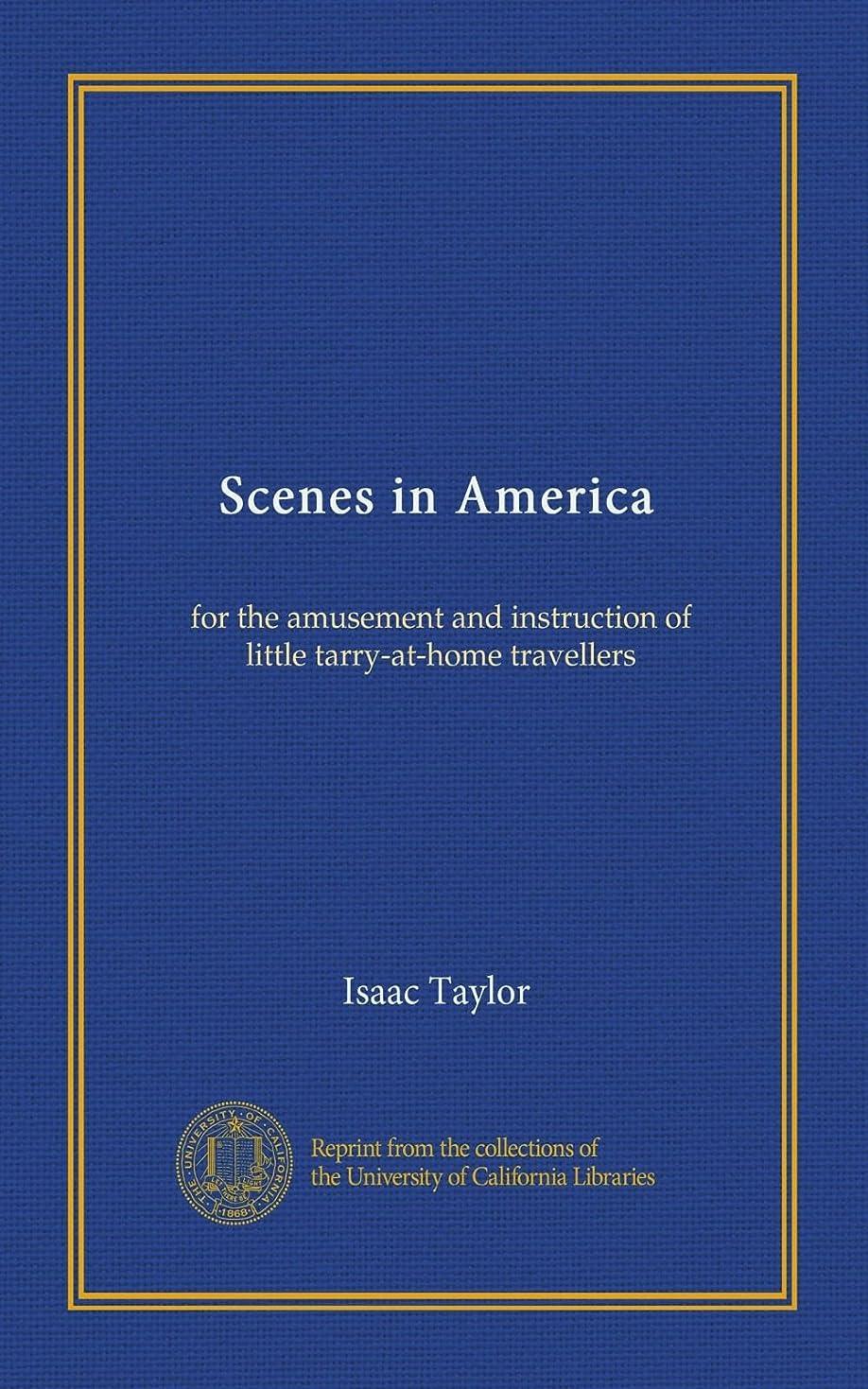 流産馬鹿支払うScenes in America: for the amusement and instruction of little tarry-at-home travellers