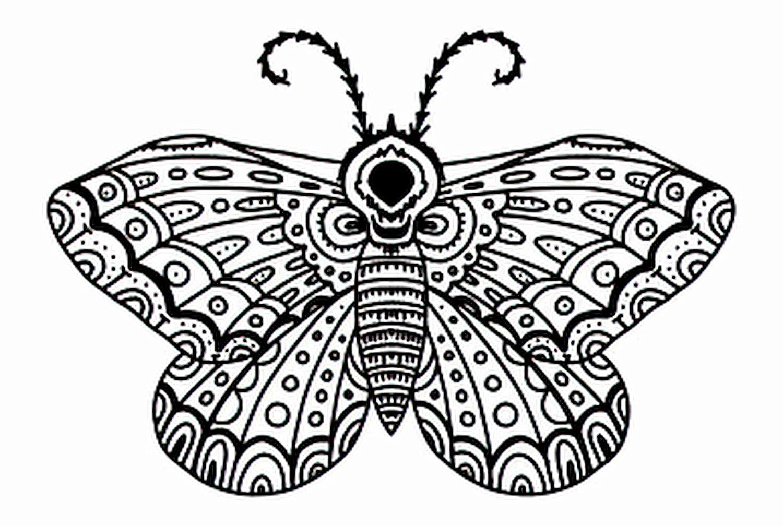 6 Sale Sheets Temporary Tattoos Butterfly Li Washington Mall in Tattoo Sketching Moth