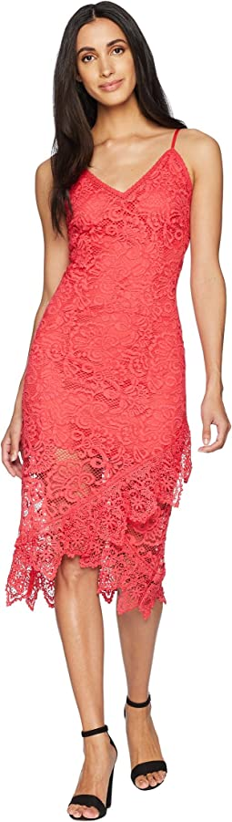 RSVP Rylee Lace Dress with Scallop Hem