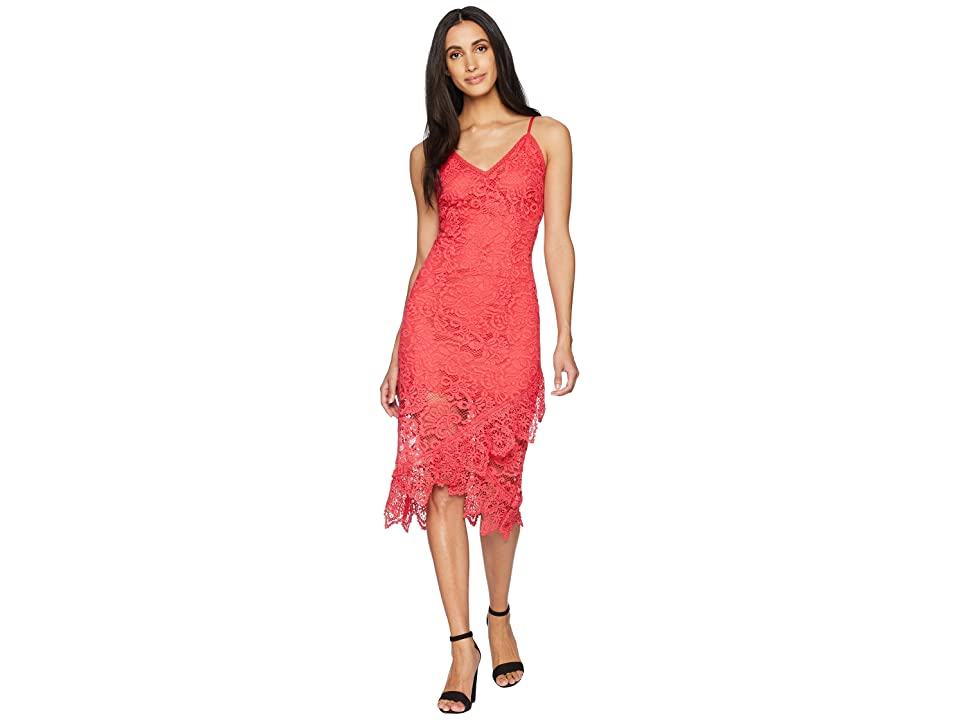 BB Dakota RSVP Rylee Lace Dress with Scallop Hem (Glow) Women