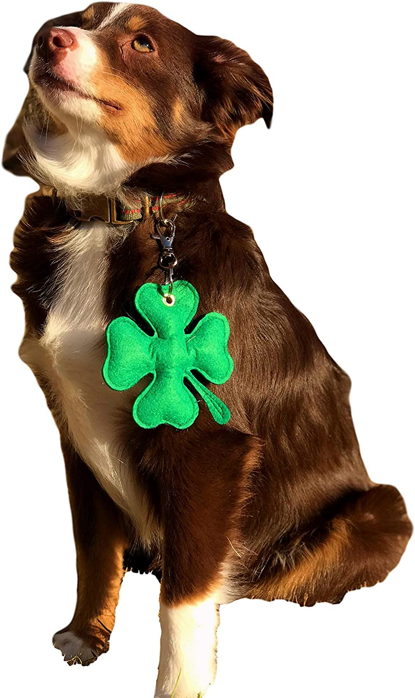 St Pattys Dog Collar Clover Dog Collar Green Dog Collar Lucky Dog