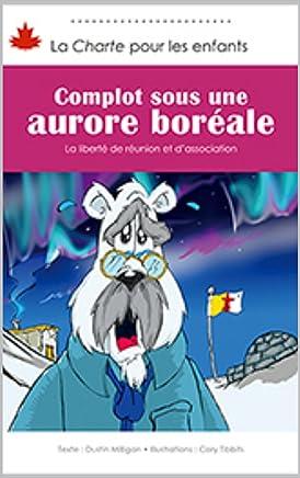 Amazon Fr Aurore Boreale Primaire Scolaire Et