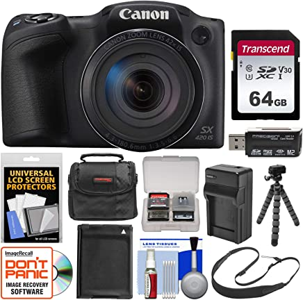 Canon PowerShot SX420IS WiFi Cámara Digital Con Tarjeta de 64GB + Case + Batería + Cargador + Flex trípode + Correa + Kit Negro
