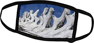 3dRose Bahamas, Exuma Island. Sperm Whale Bones on Display. - Face Covers (fc_226513_1)