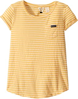 Golden Glow Rev Marina Stripes