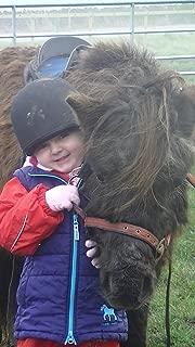 Teaching Children to Ride Ponies