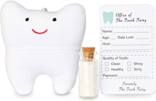 Cairn Co. Tooth Fairy Pillow Kit with Keepsake Notepad and Magic Glitter – for Boys and Girls – Hanging Option – Fun for Kids – 3 Piece Set