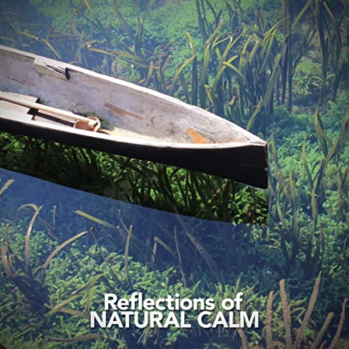 Channel Birds by Sounds of Nature Relaxation on Amazon Music