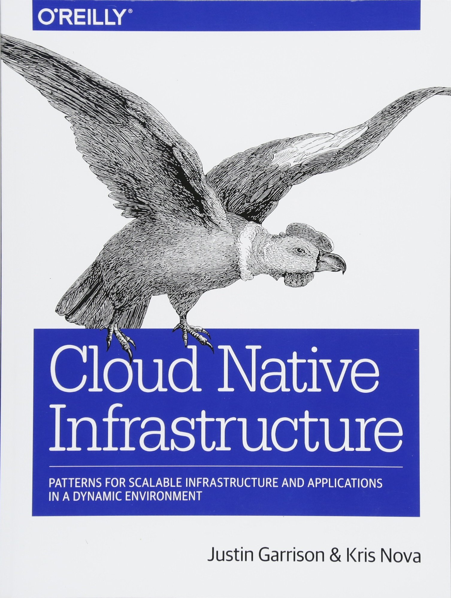Image OfCloud Native Infrastructure: Patterns For Scalable Infrastructure And Applications In A Dynamic Environment