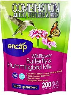 wildflower seeds online