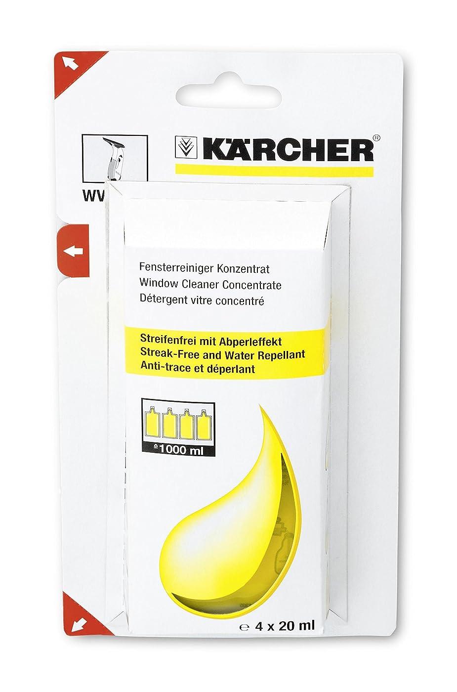 海賊餌整然としたKARCHER(ケルヒャー) WV50プラス専用洗浄剤 6.295-302